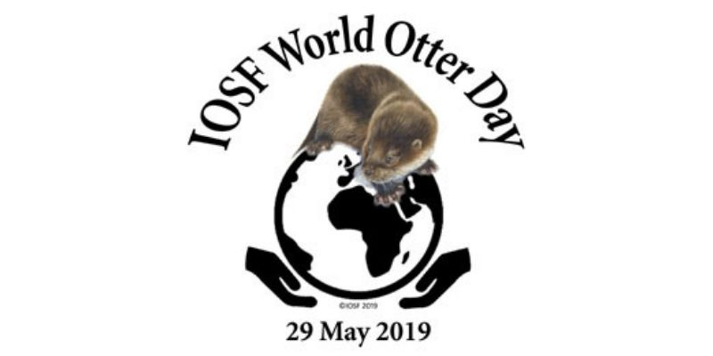 Join us for World Otter Day!