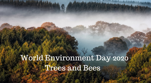 Climate Action North 3rd Annual Conference – Trees and Bees