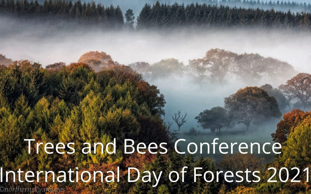 Climate Action North – Trees and Bees Conference