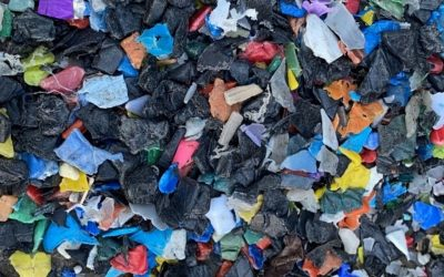 Climate Action North makes an impact with plastic waste