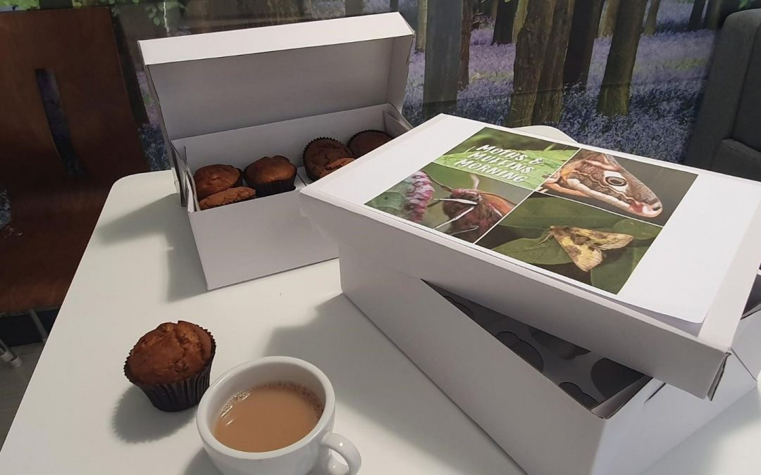 Moths and Muffins offers networking with a difference